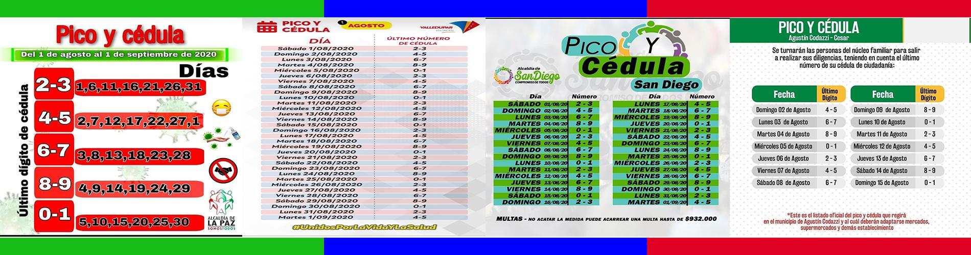 Pico y Cédula M/pios
