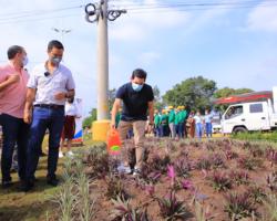"""La alcaldía de Valledupar y el Área Metropolitana propenden por la recuperación de la estructura ecológica urbana a través del programa """"Valledupar Florece"""""""